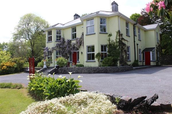 A remarkable period style property ireland luxury homes for Luxury homes for sale ireland