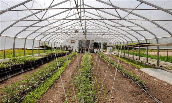 Urban Certified Organic Farm Quebec Luxury Homes