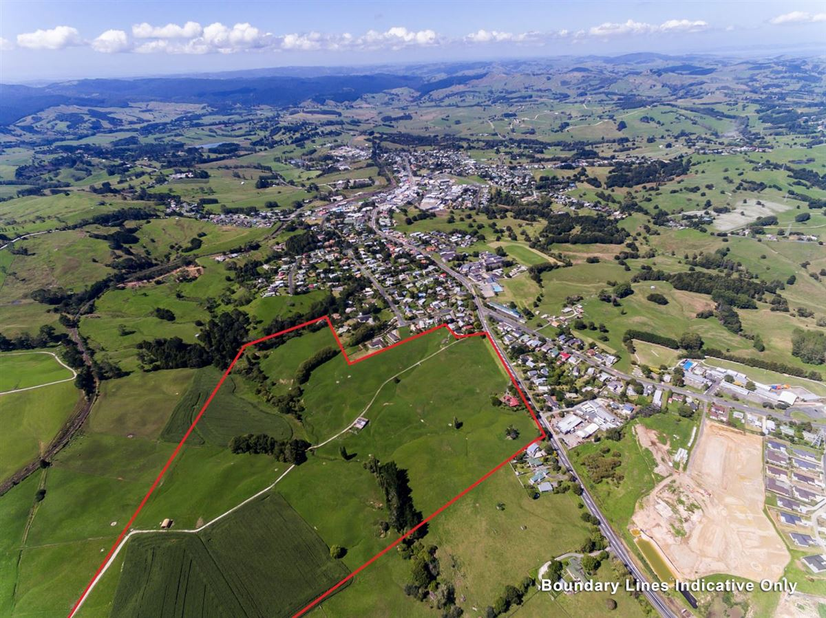 338 Rodney Street, Wellsford, Auckland - NZL (photo 3)