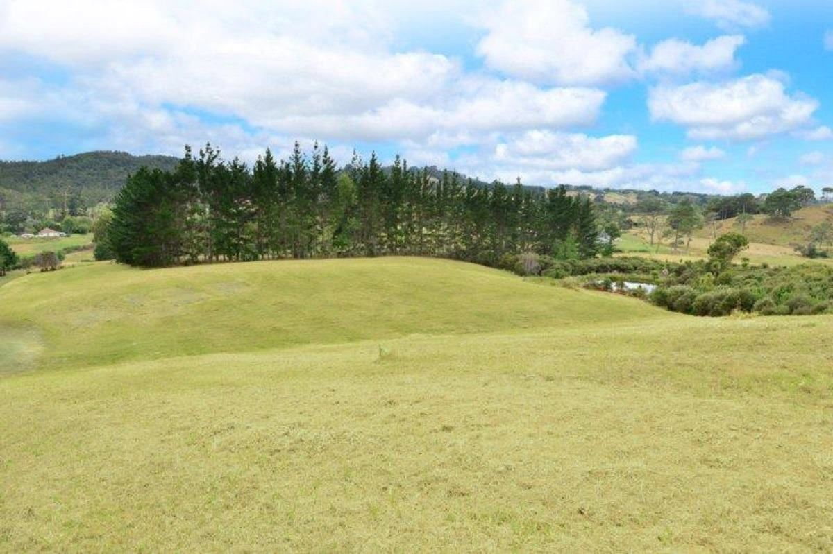 411 Pine Valley Road, Dairy Flat, Auckland - NZL (photo 4)