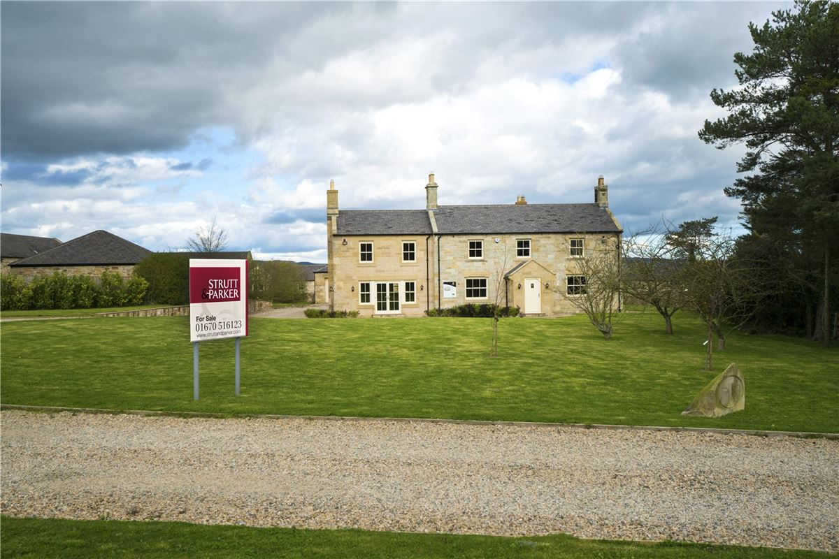 Highmoor Farm, Longhorsley, Morpeth - GBR (photo 5)