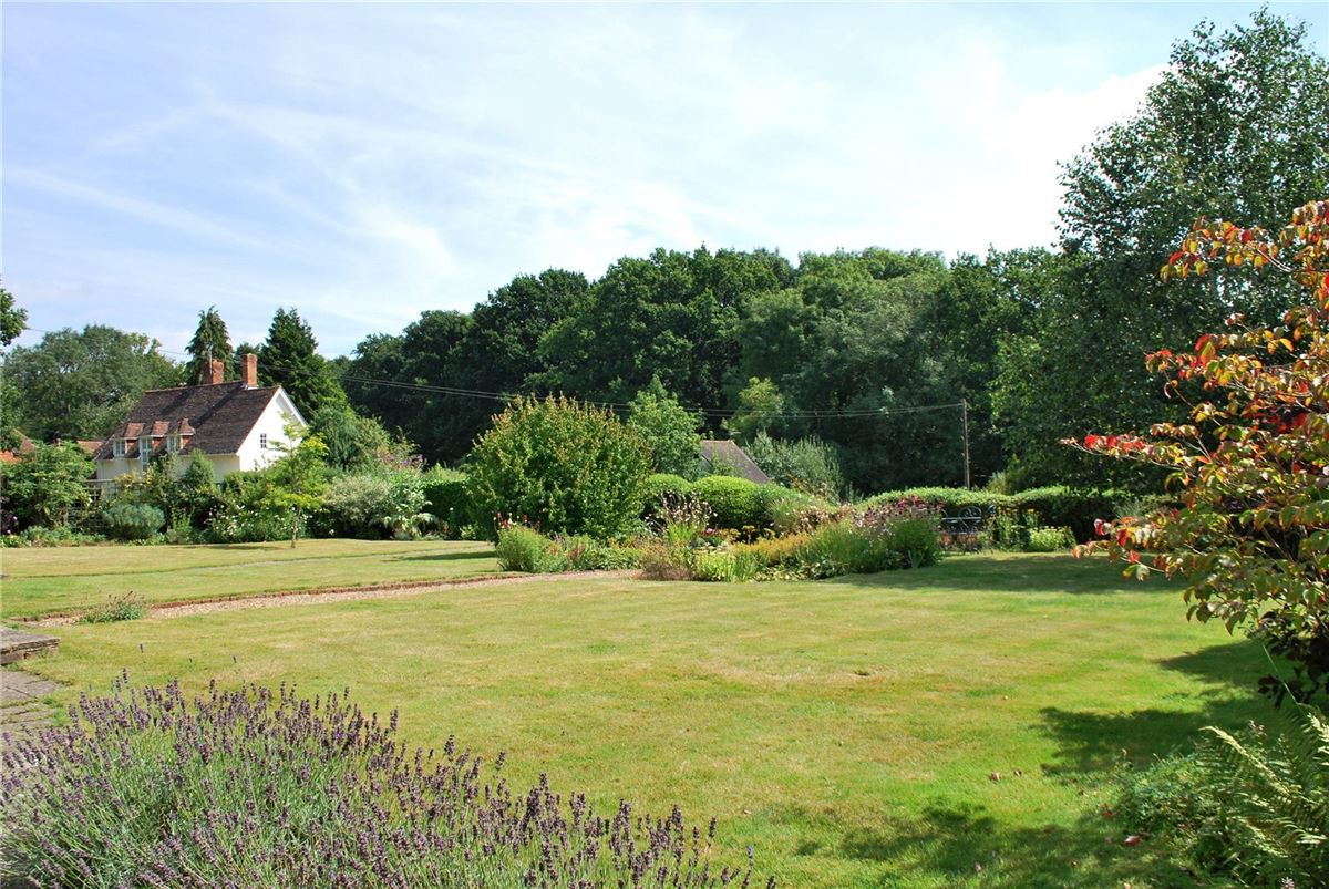 The Common, Dunsfold, Godalming - GBR (photo 2)