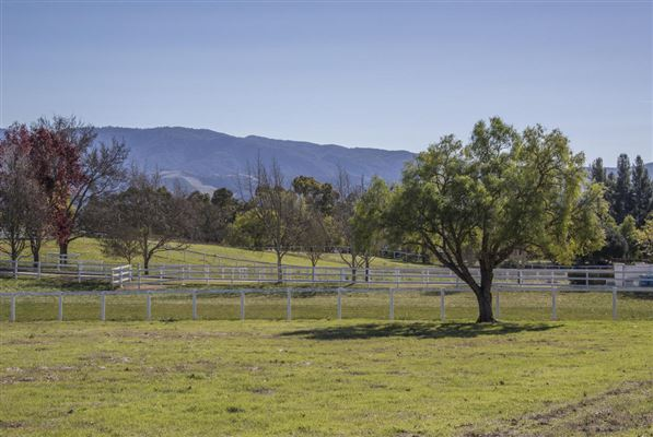 1575-95 Calzada, Santa Ynez, CA - USA (photo 5)