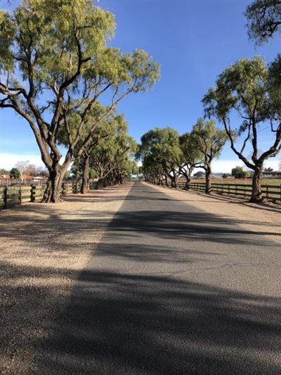 2701 Pepper Tree Ranch, Santa Ynez, CA - USA (photo 3)