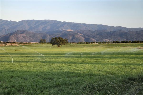3800 Baseline, Santa Ynez, CA - USA (photo 5)