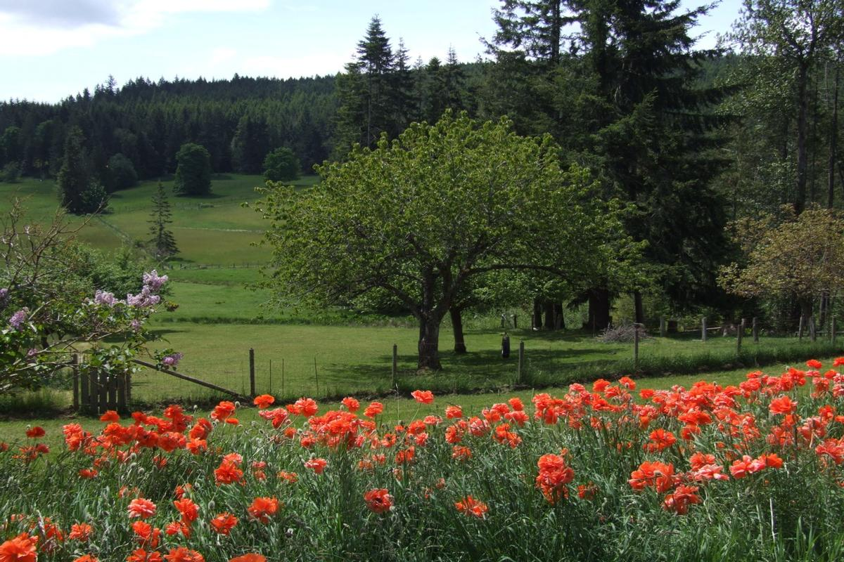 SWEETWATER FARM | British Columbia Luxury Homes | Mansions ...