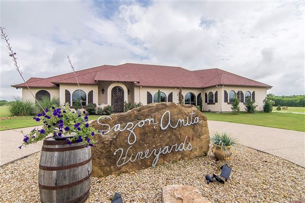 Exquisite One Story On 30 Acres With Vineyard