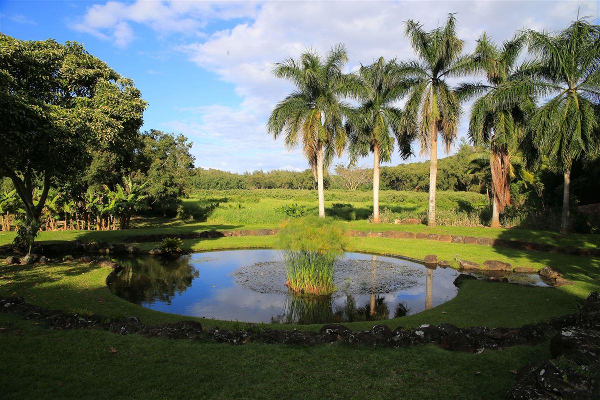 4316-y Kahili Makai Rd D, Kilauea, HI - USA (photo 3)
