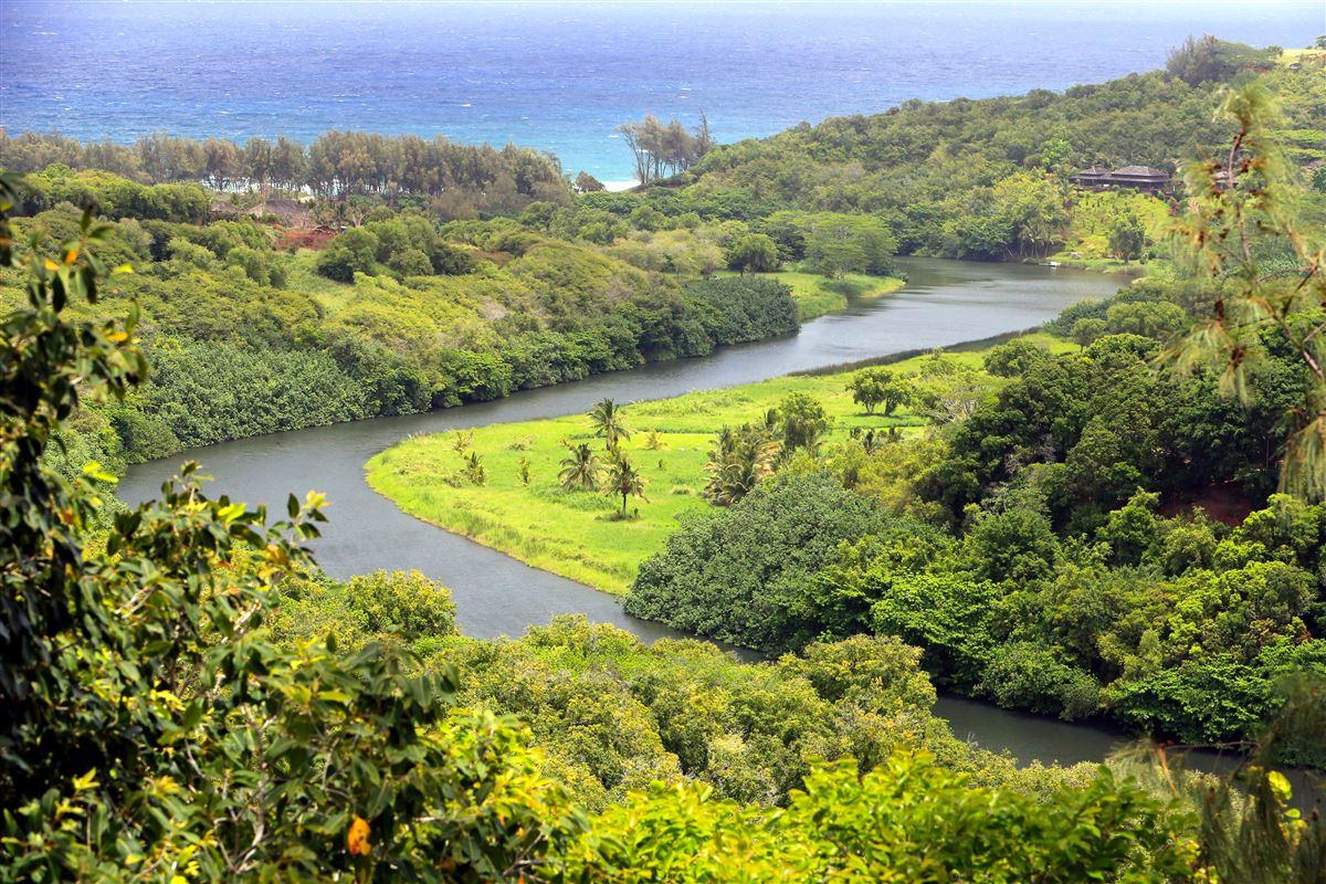 4316-y Kahili Makai Rd D, Kilauea, HI - USA (photo 4)