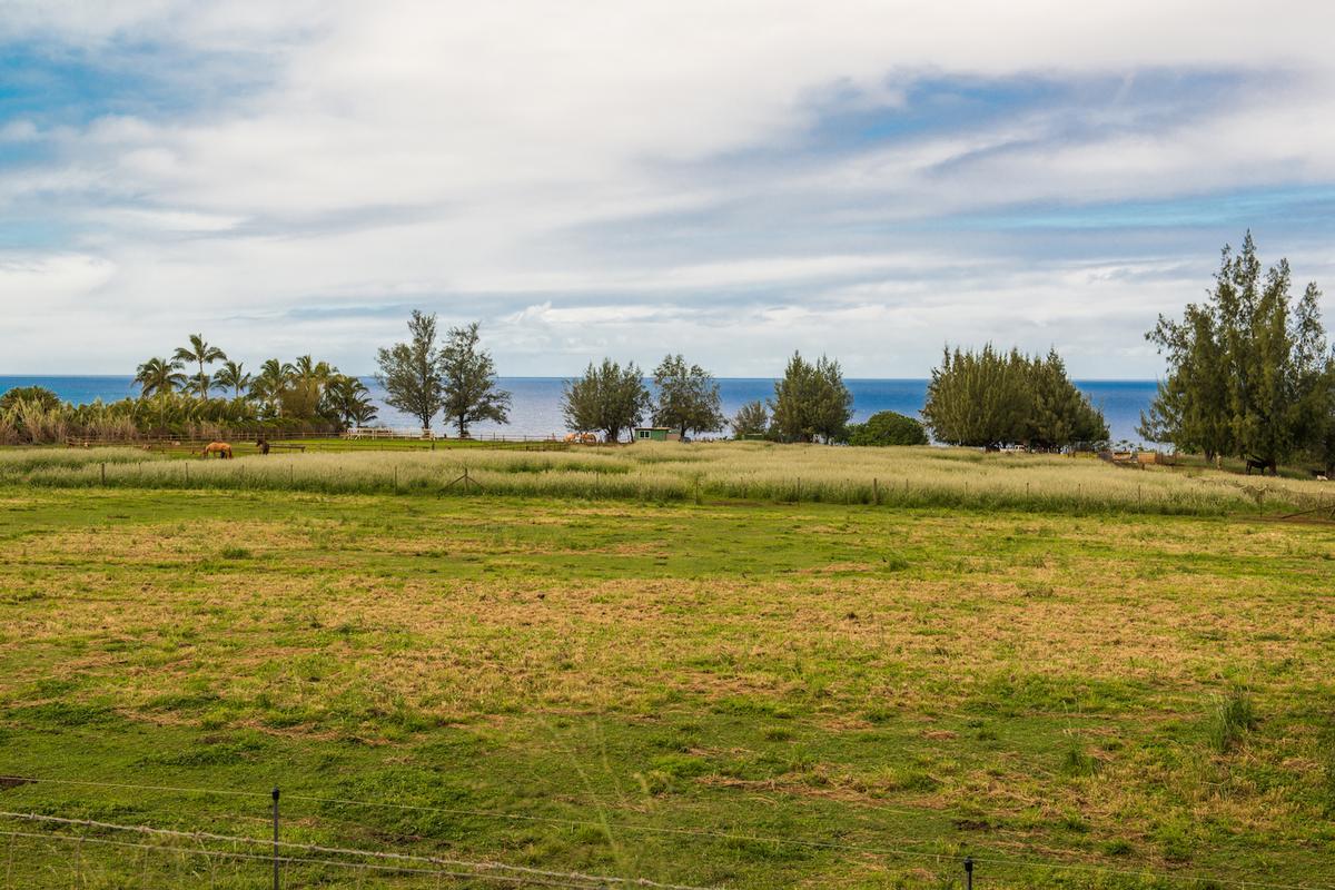 Kauapea Road, Kilauea, HI - USA (photo 5)