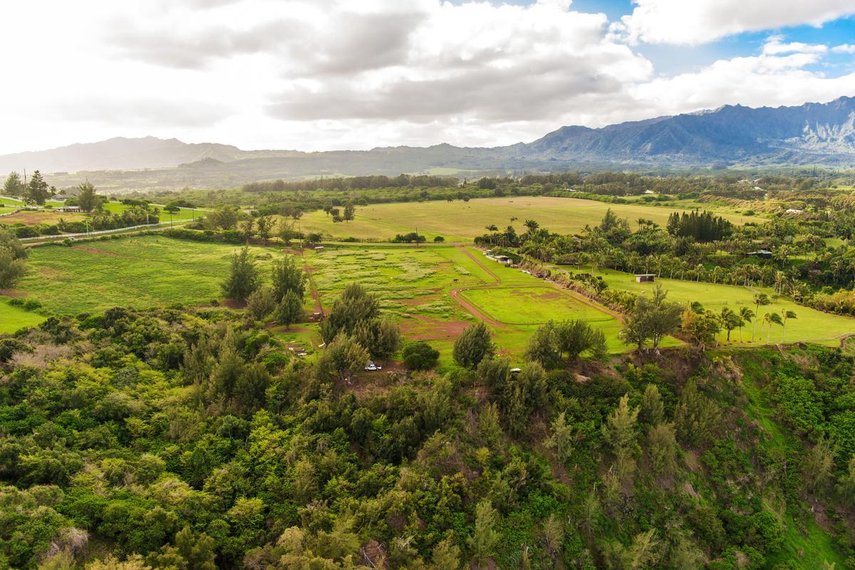 Kauapea Road, Kilauea, HI - USA (photo 1)