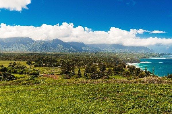 Kauapea Rd., Kilauea, HI - USA (photo 3)