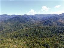 prestigious Balsam Mountain Preserve luxury homes