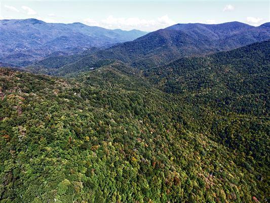 Luxury homes  prestigious Balsam Mountain Preserve