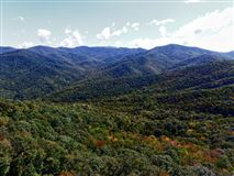 Mansions  prestigious Balsam Mountain Preserve
