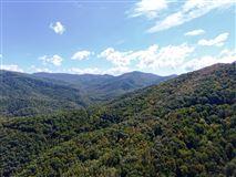 Mansions in  prestigious Balsam Mountain Preserve