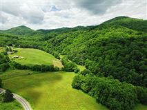 Rare large wooded land tract luxury homes