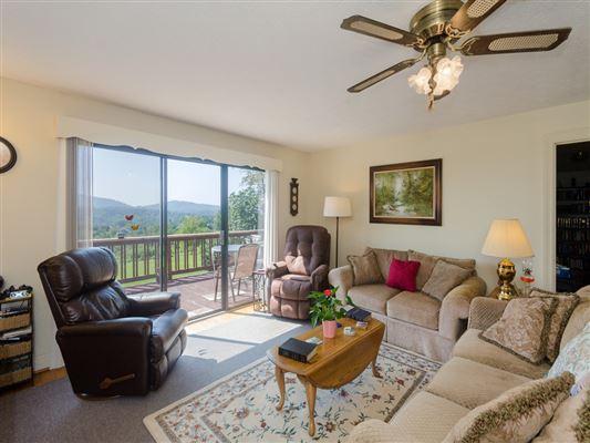 Luxury homes beautiful property in weaverville