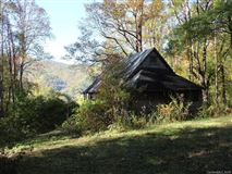 Fantastic 310 acre property in Reems Creek luxury real estate