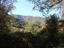 Fantastic 310 acre property in Reems Creek mansions