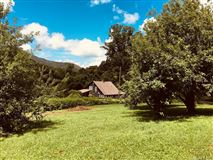 Mansions Fantastic 310 acre property in Reems Creek