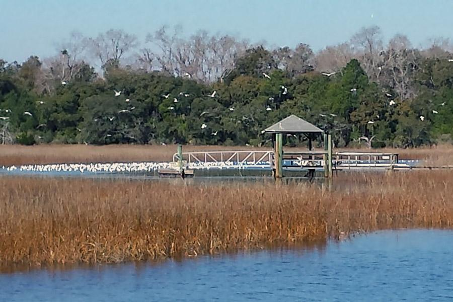 Waterfront MASTERPIECE ON KNOWLES ISLAND, SC luxury homes
