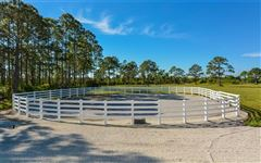 Luxury homes 14 acre property with custom Horse Stable