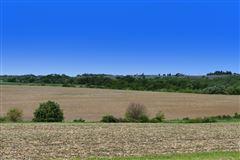 Mansions WINDY RIDGE FARM