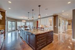 Luxury homes in custom home in desirable Blackhawk subdivision