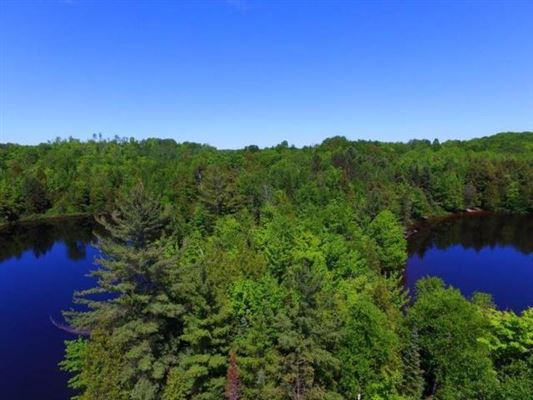 Luxury homes  amazing legacy parcel in presque isle