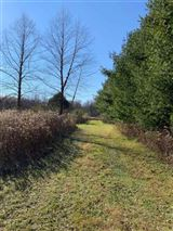 rare 94-acre private wooded estate site luxury properties
