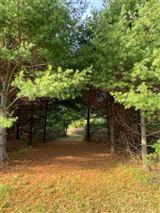 rare 94-acre private wooded estate site mansions