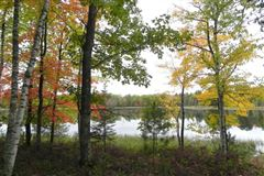 Luxury properties A special 190 acre property