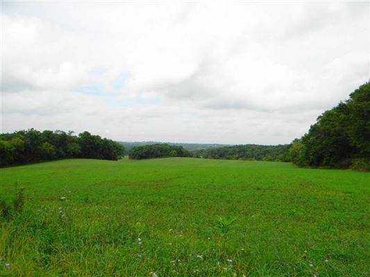 Luxury homes in  gorgeous 39 acre property