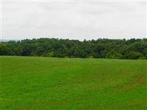 Luxury properties  gorgeous 39 acre property