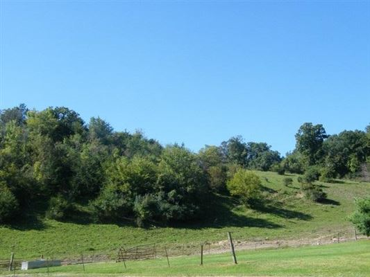an amazing 198 acre farm in cross plains luxury real estate