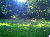 Mansions Epic 900 Acre Wildlife Sanctuary