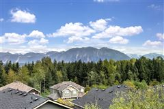 An immaculate Mount Si view home  luxury homes