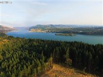 sought after Columbia River Gorge view mansions