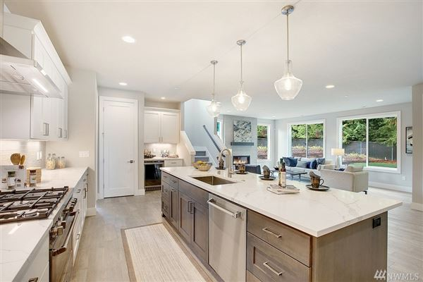 Luxury properties new contemporary estate home in Shelton Heights