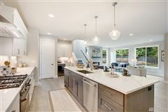 new contemporary estate home in Shelton Heights luxury homes
