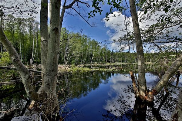 Luxury real estate Willow Pond Waterfront LakeHouse