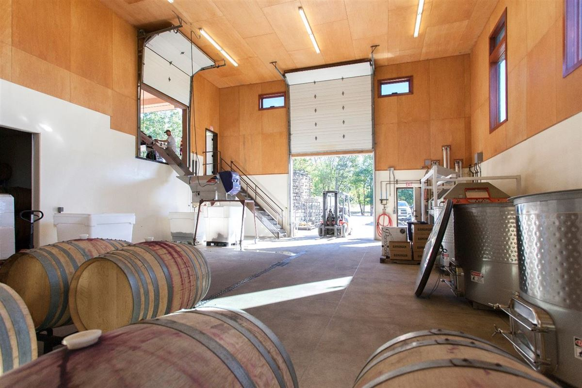 Mansions Award winning Winery and Vineyard property