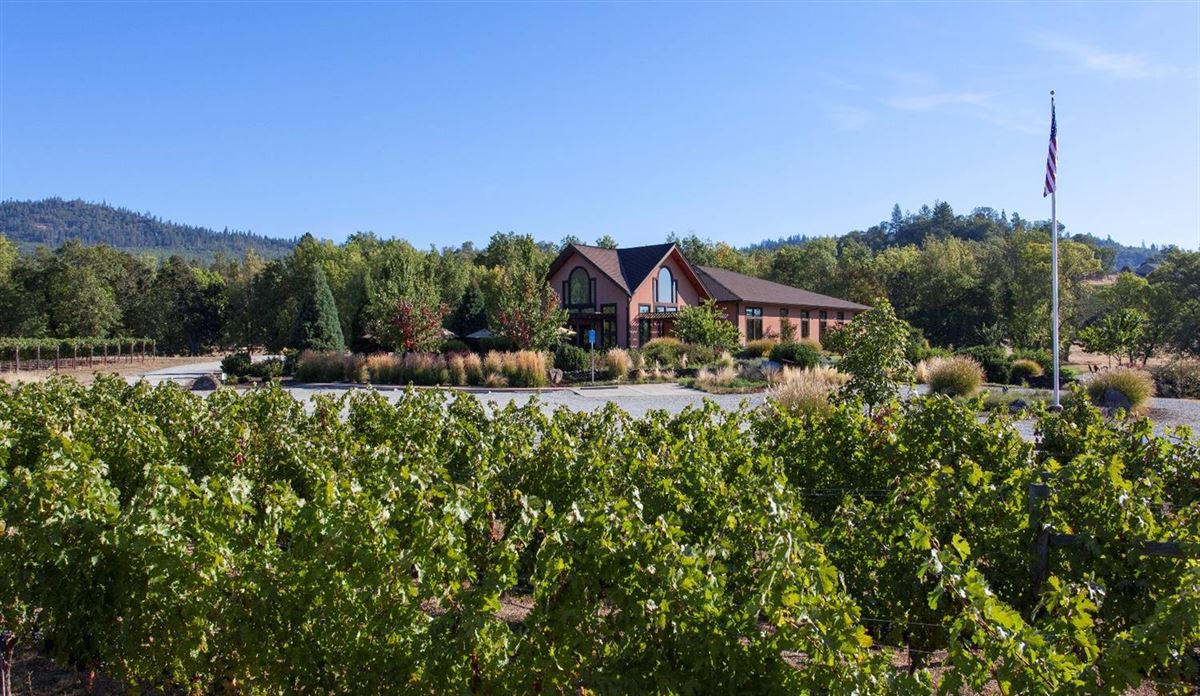 Luxury homes Award winning Winery and Vineyard property