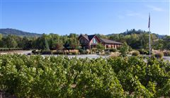 Award winning Winery and Vineyard property mansions