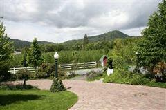 Luxury properties Gorgeous vineyard property