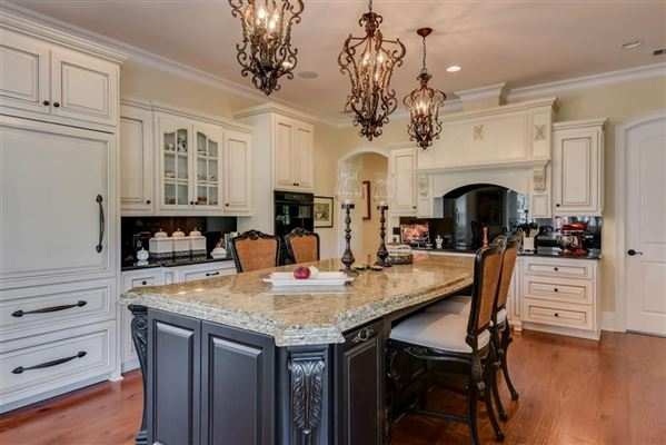 a spectacular equestrian estate luxury homes