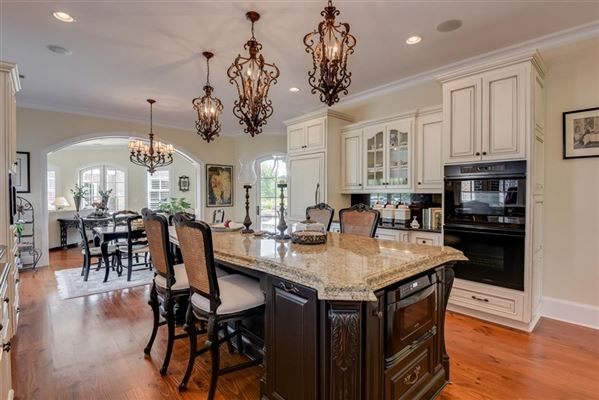 Luxury properties a spectacular equestrian estate
