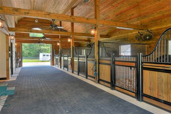 Luxury real estate a spectacular equestrian estate