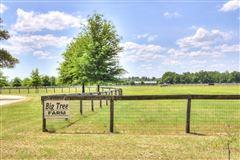 Luxury real estate Lovely horse farm